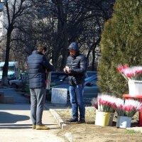 Дарите женщинам цветы! :: Татьяна Смоляниченко