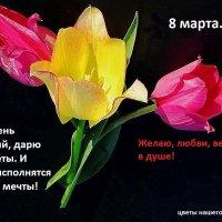 ПОЗДРАВЛЯЮ ТЕБЯ :: Дмитрий Строганов