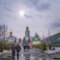 Дорога к храму... :: Вера Бокарева