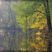Просто осень... :: Николай Панов