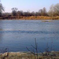 Река, нарушив все свои границы, пошла на берег, лес, и  на поля . :: Валентина ツ ღ✿ღ