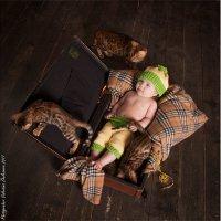 Бенгальские котята и малыш :: valentina