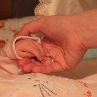 Hands :: Ksyusha Pav