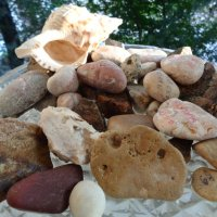 Огород камней в японском стиле ваби-саби... :: Алекс Аро Аро