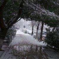 Зима :: Валентина Юшкова