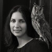 Портрет с совой :: SvetlanaScott .