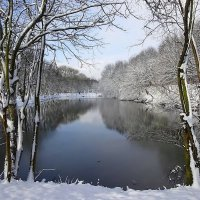 Зимние зарисовки марта в парке Южный :: Маргарита Батырева