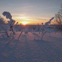 Закат и морозец!!!! :: Олег Кулябин
