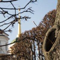 Весна в Кусково :: Александра