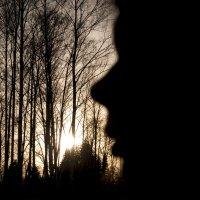 Там, где солнце :: Татьяна Шторм