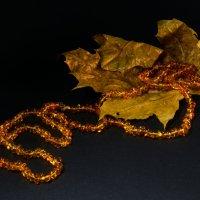 янтарная осень :: Puma V.