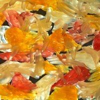 50 оттенков цитрусовых :: Светлана Моисеева