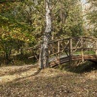 Мостик в лесу :: Николай Климович