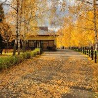 Золотые краски осени. :: Борис Руненко
