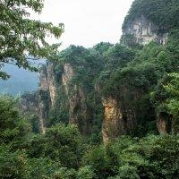 Китай :: Андрей Бондаренко