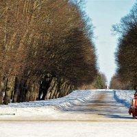 Тройная Липовая аллея... :: Sergey Gordoff