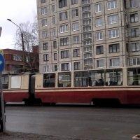 Городской трамвай :: Svetlana Lyaxovich