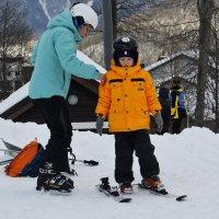 Ещё одна лыжа... :: Дмитрий Петренко