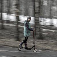 Она любит скорость. :: Анатолий. Chesnavik.