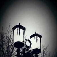 Огни Ночи :: Виктория Нефедова