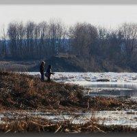 Первая весенняя рыбалка. :: Paparazzi