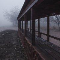 Туман :: Влад