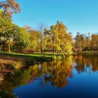 Очарование Шапельного пруда... :: Sergey Gordoff
