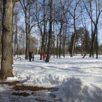Весна в парке Горького :: Наиля