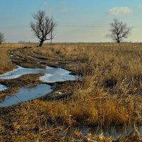 Трудные дороги...(фотографа) :: владимир