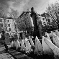 Поклонение белыхх :: Ирина Зайцева