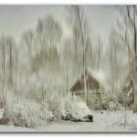 Зимняя зарисовка :: Татьяна Смирнова