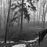 Там.., за туманами... :: tipchik