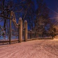 Врата :: Олег Окселенко