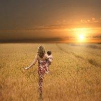 На закате :: Olga Verenich