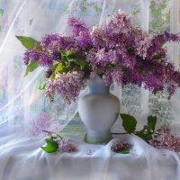 Как празднично сад расцветила сирень... :: Валентина Колова