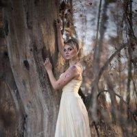 В таинственном лесу :: Любовь Дашевская