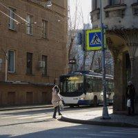 пешеходный переход :: sv.kaschuk