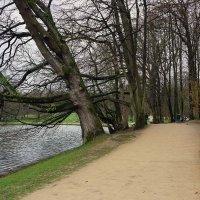 Bois de la Cambre, Bruxelles, Belgique :: Борис Соловьев