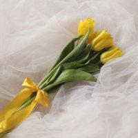 желтые тюльпаны :: Анна Городничева