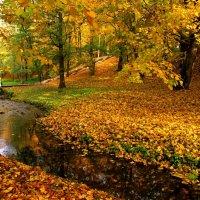 Осенний пейзаж :: Сергей Карачин