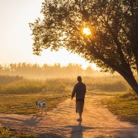 прогулка с собакой (снято в августе 2016) :: Борис Медведев