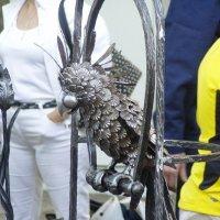 Попугай из стали :: vadim