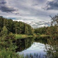 Лето. Пруд в окрестностях Новосибирска. :: Vadim Piottukh
