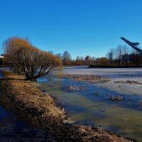У весеннего пруда... :: Sergey Gordoff