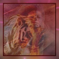 подруга тигру :: Ольга Сафонова
