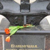 17 марта 2017. Великие Луки. День памяти вице-адмирала А.И. Непенина... :: Владимир Павлов