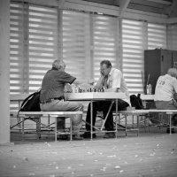 Шахматисты :: Геннадий Слезнев