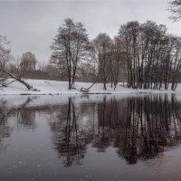 Река Сестра :: Дмитрий Б.
