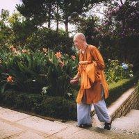 Буддийский монах...Вьетнам. :: Александр Вивчарик