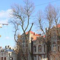 Родной город-1644. :: Руслан Грицунь